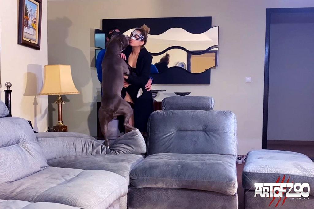 Art Of Zoo - Disco Stick - Donna - dog porn