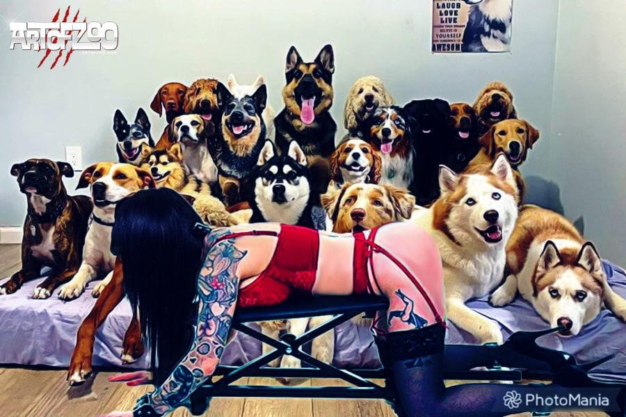 Art Of Zoo Dog Porn Mogul Project #2 - Strict Machine