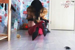 Art of Zoo - Nana - Trick or Knot - dog porn movie