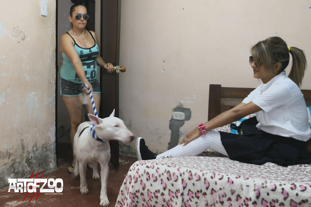 Art Of Zoo - Naughty Girl - Mama Mocha and Cookie - dog porn